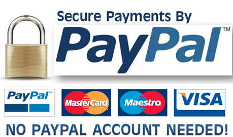 PayPalPayment2